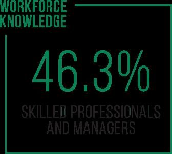 Workforce Knowledge